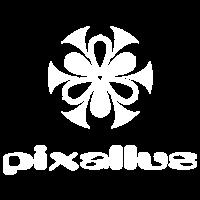 pixallus-logo-new-white