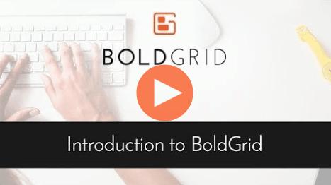 BlodGrid - beginners