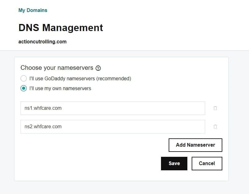 setting up dns management on Godaddy