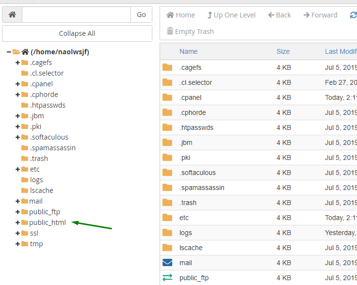 Host's root directory shown in the File Manager