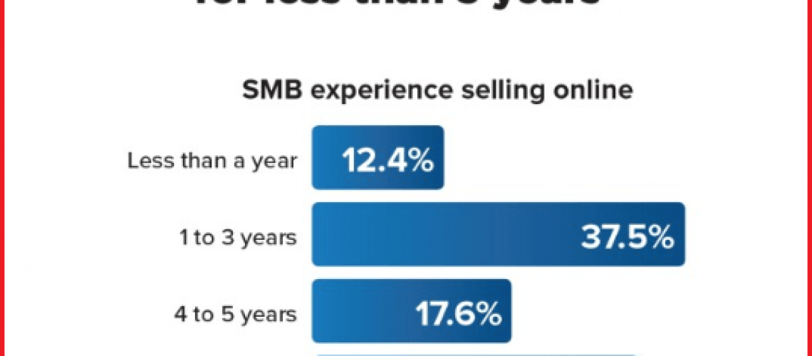 SMBs-selling-in-Amazon-stores.png