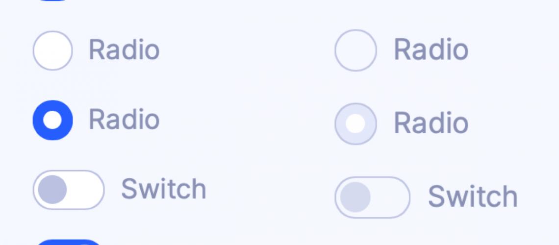 custom-form-inputs.png