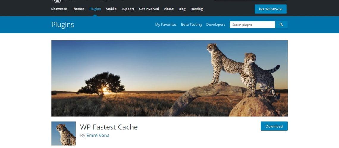 wp-fastest-cache-wordpressorg-download.jpg